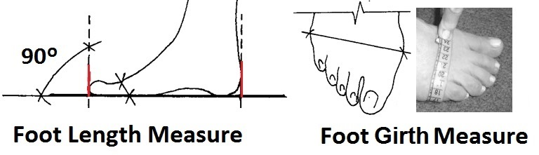Length, Width Measurement